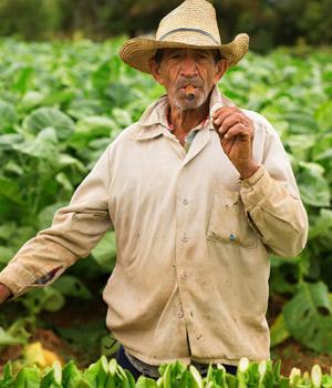 Bezienswaardigheden Cuba, Vinales