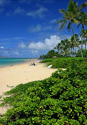 Tropische stranden Mauritius