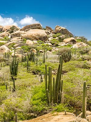 8x doen Aruba, Arikok Nationaal Park