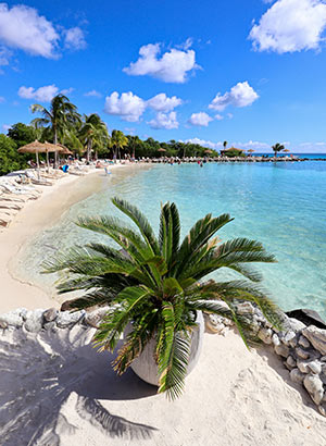 Vakantie ABC eilanden Aruba