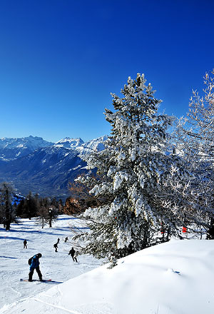 Wintersport in Zwitserland, Les Quatre Vallées