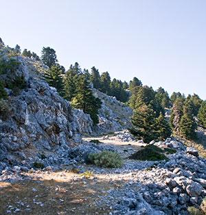 Vakantie Kefalonia: hoogste berg Enos