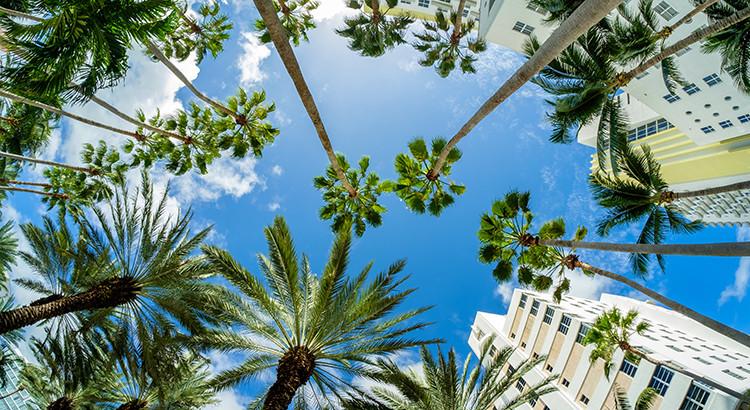 Bezienswaardigheden Miami