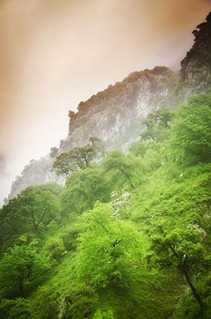 natuurparken Spanje: Nationaal park Picos de Europa