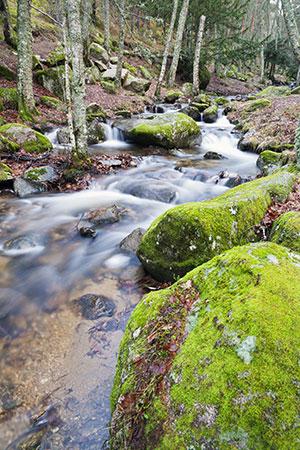 Natuurparken Spanje Sierra de Guadarrama