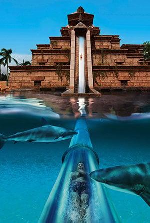 Aquaventure waterpark in dubai vakantiediscounter - Naar beneden meubels huis ter wereld ...