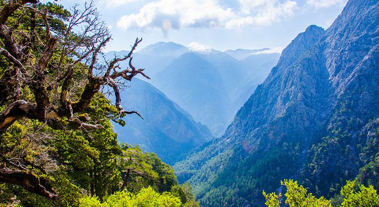 Natuur op Griekenland: Samaria kloof, Kreta