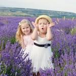 Familievakantie in Zuid-Frankrijk: de mooiste regio's op een rij