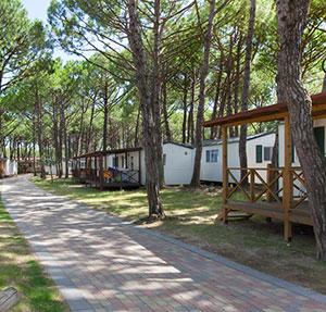 Populaire kampeerbestemmingen: Camping Ca' Pasquali Village