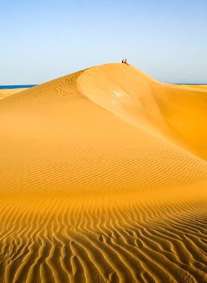Zien in gran Canaria: Dunas de Maspalomas