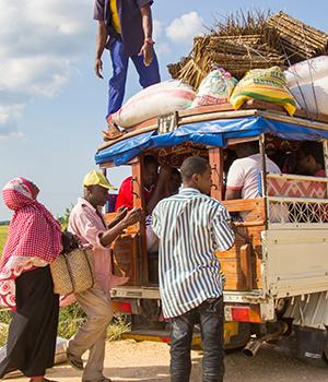 Doen op Zanzibar, Dala Dala