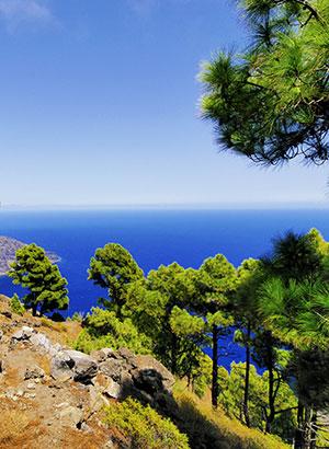 Minder bekende Canarische eilanden: El Hierro