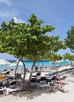 Mooiste stranden Curacao: Cas Abou