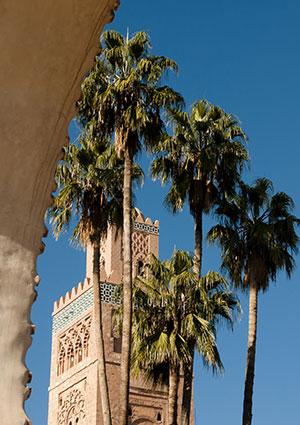 Winterzon bestemmingen: Marrakech