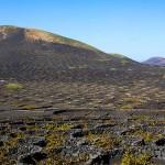Een vulkanisch wijntje proeven? Ga naar Lanzarote!