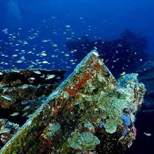 Bezienswaardigheden Aruba: scheepswrak