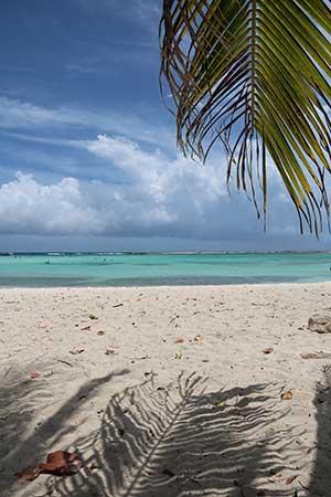 San Nicolas: Baby Beach