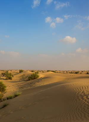 Jeepsafari Dubai, woestijn