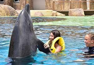 Legend of Aqua: met dolfijnen zwemmen