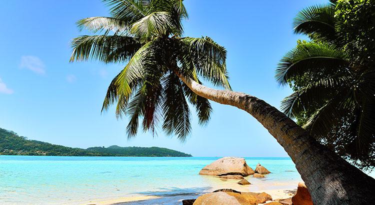 vakantie-seychellen
