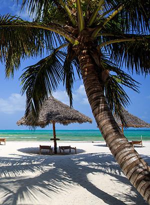 Tropische vakantiebestemmingen: Zanzibar