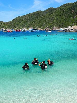 Vakantie Koh Tao, duiken