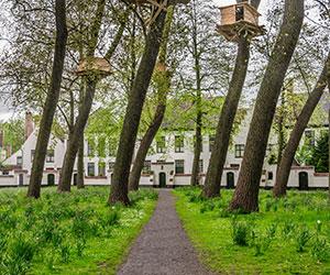 Doen in Brugge: Begijnhof