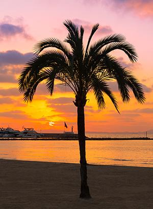 Badplaatsen Mallorca: Playa de Palma