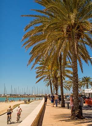 Vakantie Mallorca tips: klimaat