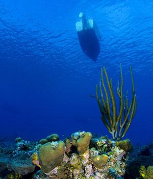 Dagtocht Klein Curacao, boottocht