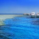 Op pad! Alles over de excursiemogelijkheden aan de Rode Zee