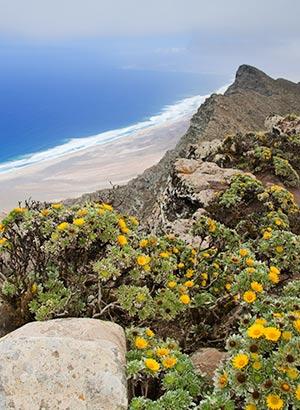 Mooiste uitzichtpunten Fuerteventura: Pico de la Zarza