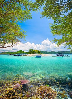 Nieuw aanbod: Lombok, Indonesië