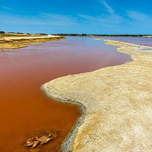 redenen vakantie Senegal, Roze Meer