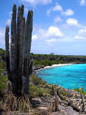 Nederlandse Antillen eilanden, Bonaire