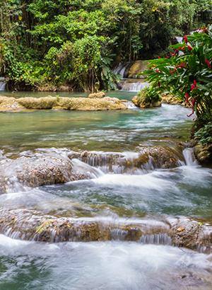 Watervallen nabij Negril, Jamaica