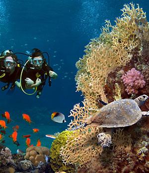 5 redenen vakantie El Gouna, snorkelen en duiken
