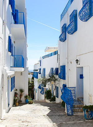 Mooiste plaatsen Tunesië; Sidi Bou Said