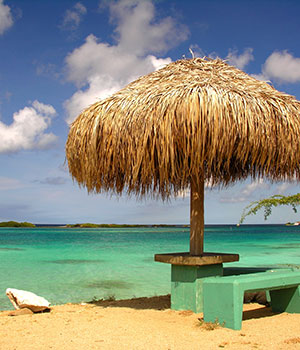 Spaanse Lagoen, Natuur Aruba
