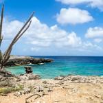 Washington Slagbaai Nationaal Park Bonaire
