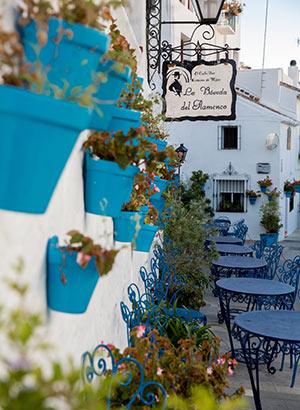 Dagtripjes Málaga: Mijas