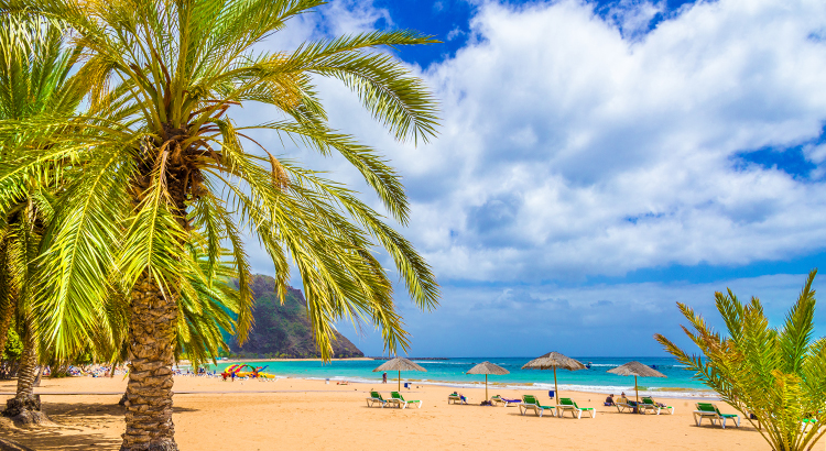 The Best of Tenerife