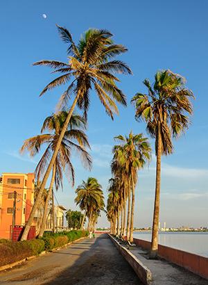 Zon in november: Senegal