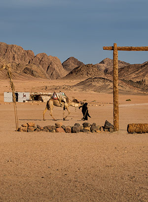 Doen in Hurghada: woestijn