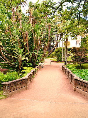 Sao Miguel, Terra Nostra Park