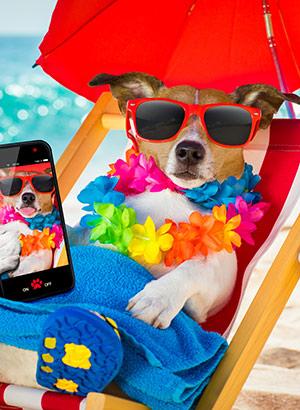 Tips beste vakantie selfies