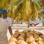 Go Dominican! De leukste excursies vanuit Punta Cana