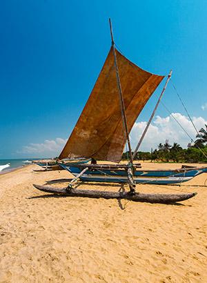 Zon in maart: vakantie Sri Lanka