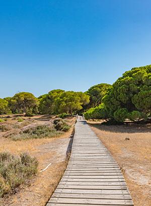Costa de Huelva, natuurpark Donana