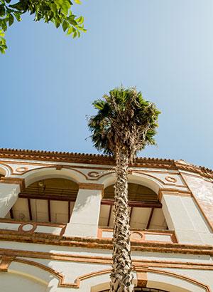Voorjaar in de Spaanse steden: Málaga